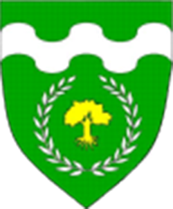 Shire of Coill Fhinnonabhann Arms